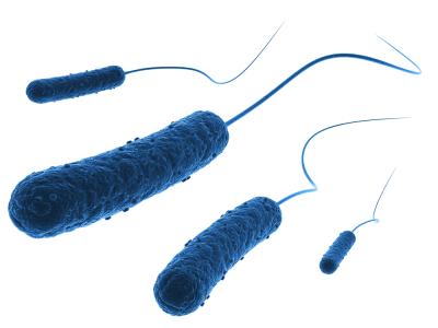 Vaš partner za industrijsko mikrobiologijo
